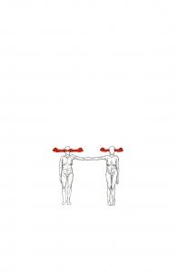 http://erikotsogo.com/files/gimgs/th-4_seeing-seeing-hearing-hearing_12638355315_o.jpg